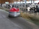 Bauernhof 2018_2